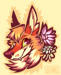 sunshine by californiacoyote
