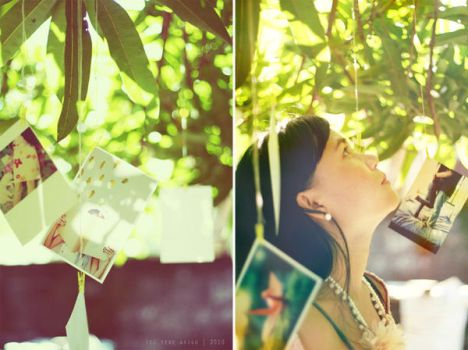 portraits by the tree by thresca