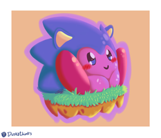 Kirby Sonic by PaixeCr4zy