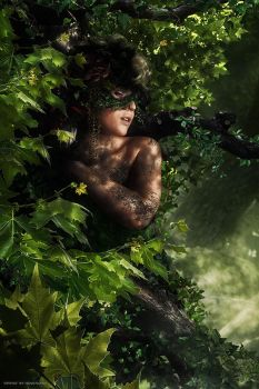 Dryad by Hoverland