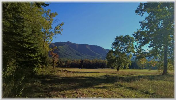 Cades Cove at Crooked Arm Trail by slowdog294