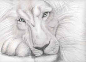 White Lion by IlariArt