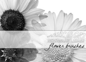 Flower Brushes by nureen-REStock