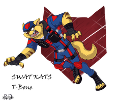 SWAT KATS by Re-RD-Re