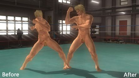 DOA5LR Normal Size Mod by ogami4