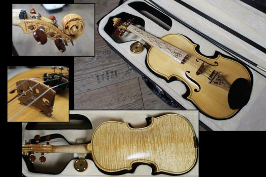 New violin finished by deviantviolins