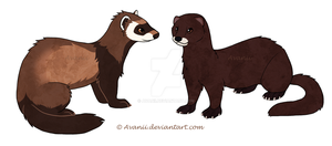 Ferret and Mink Stickers by Avanii