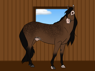 RSF Anatole [Reference Sheet] by Rising-Star-Farm
