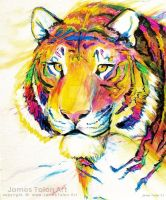 Rainbow Tiger by james-talon