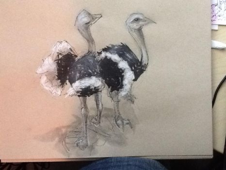 lunch doodle - ostrich by GilTriana