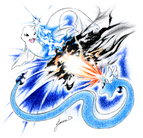 Dewgong vs. Dragonair