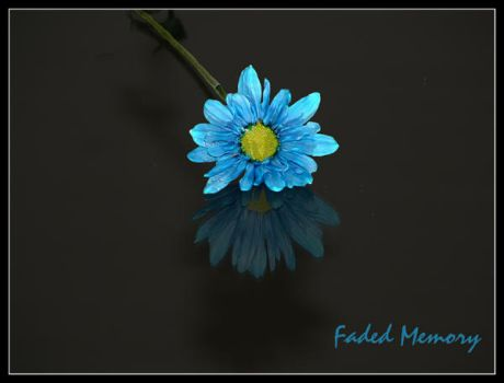 Faded Memory by ceaca