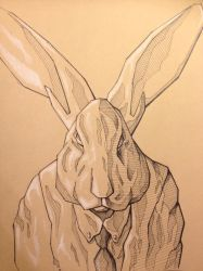 Rabbit Sketch by Tiefenbacher