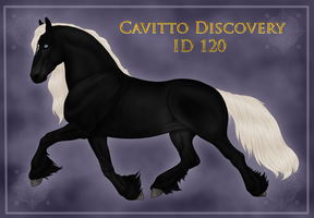 Cavitto Custom Discovery ID 120 by BrindleTail