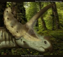 Triceratops by Christopher252