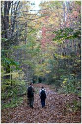 Autumn Walk by billsabub