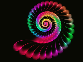 Another pretty spiral by gravitymoves