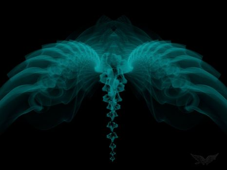 Fractal Wings by Saphyr76