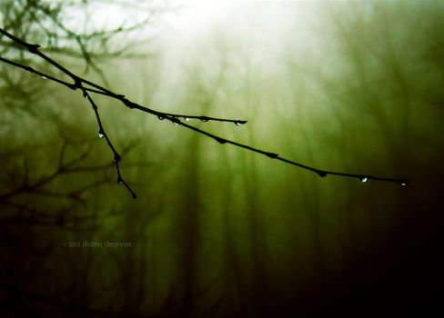 the naked purpose of winter by mere-ambivalence
