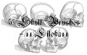 Skull Brushes by superlibbie