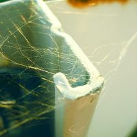 webbed.and.rusting by sarah-marley