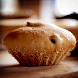 Muffin by FeelinThis