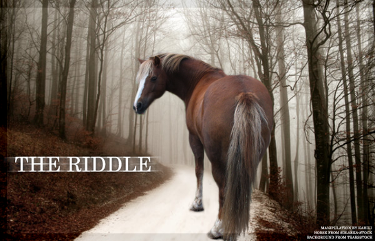 The Riddle by Kahili