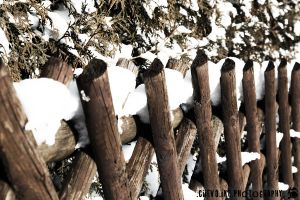 ::Snowy Fence:: by Ciievo
