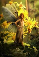 Butterfly fairy by FeriAnimations