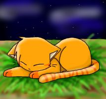 Sleeping Firepaw by XxXSora-chanXxX