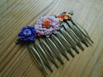 Haircomb. by Phaneres
