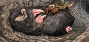 tame the savage beast, golden mole and cricket by Psithyrus