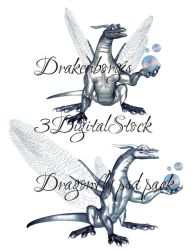 Dragon fly psd pack by 3DigitalStock