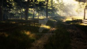 Road to the forest edge by Andywong75