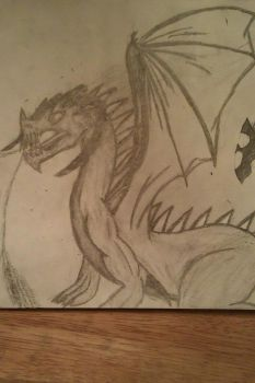 Drawn Dragons by Meister-Kummer