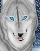 .:White Spirit:. by FallenAngelWolf13