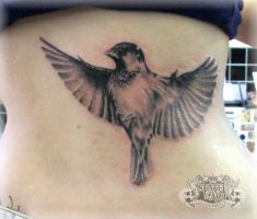 sparrow by state-of-art-tattoo