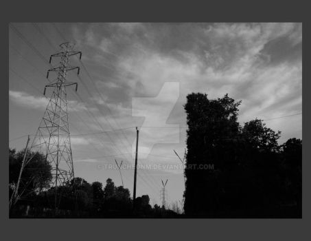Powerlines and Rodney weeds by truncheonm