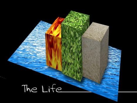 The Life by fma