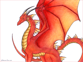 Red Dragon by Karina-Riddle