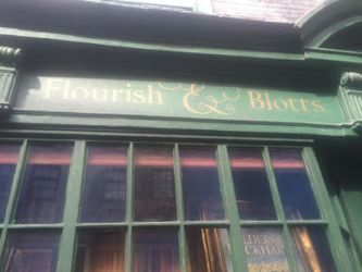 Flourish And Blotts by Asashoumikugi