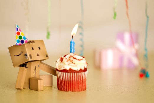 Danbo's Birthday by BryPhotography