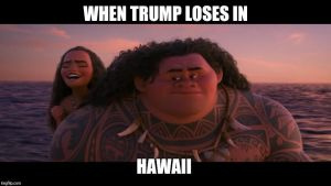 Hillary Wins Hawaii by JMK-Prime