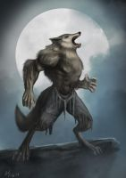 Werewolf Comic Commission by BABAGANOOSH99