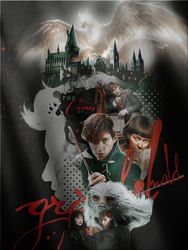 Fantastic Beasts The Crimes of Grindelwald by VaLeNtInE-DeViAnT