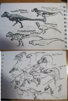 Sketches: Coelurosaurs (mostly) by Xiphactinus