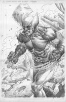 Wolverine XForce by mikitot