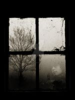 Reflection of Memories by AliceinDeadLand
