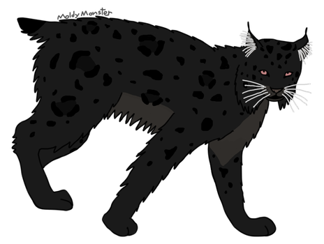 A lynx I adopted today... by MoldyMonster