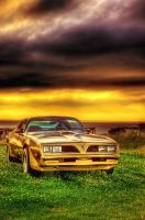 1978 Trans Am - 550HP - HDR by Witch-Dr-Tim